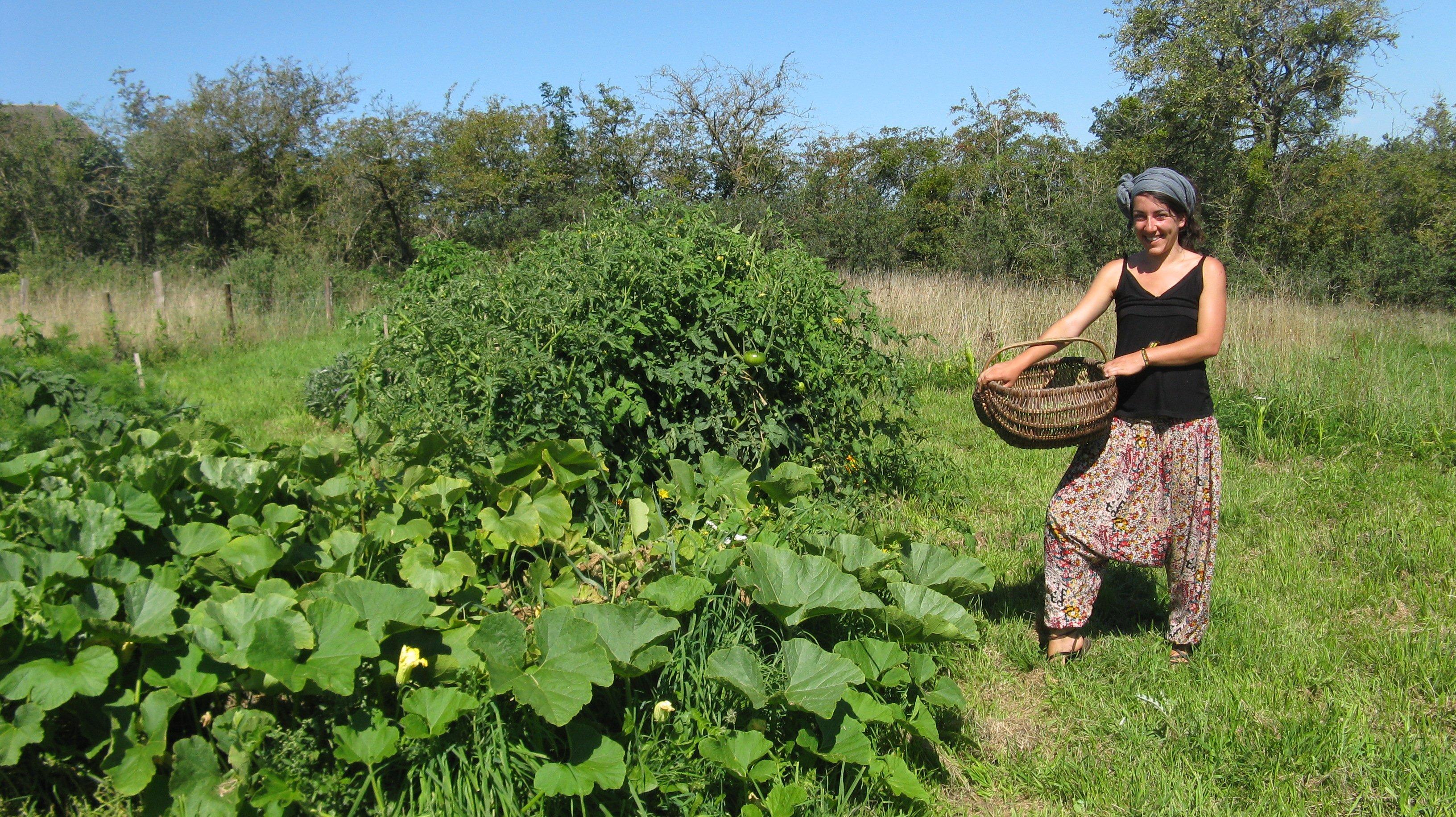 Petit r sum de 2 ans et demi au cap des ailes for Permaculture petit jardin